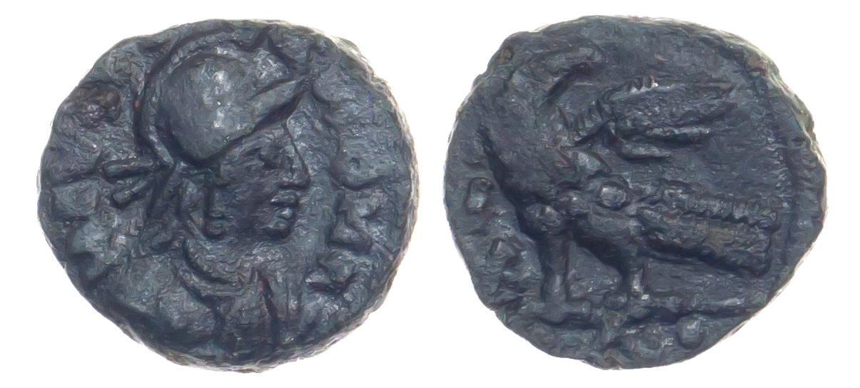 Ostrogoths, AE Follis