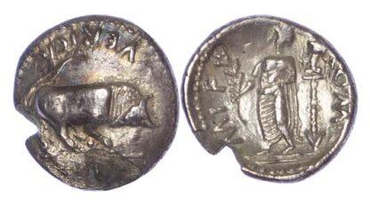 Verica, Silver Unit