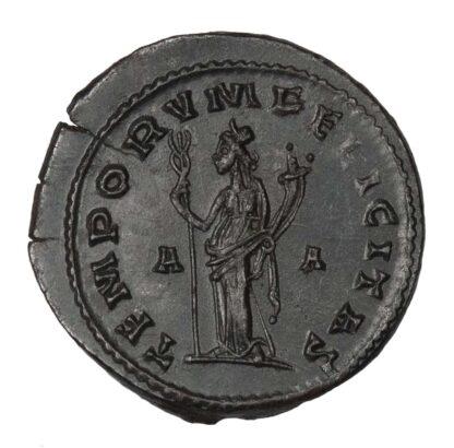 Tacitus, Antoninianus