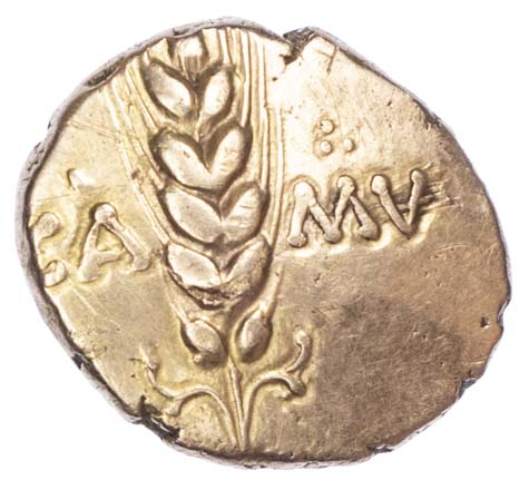 Cunobelin, Gold Stater