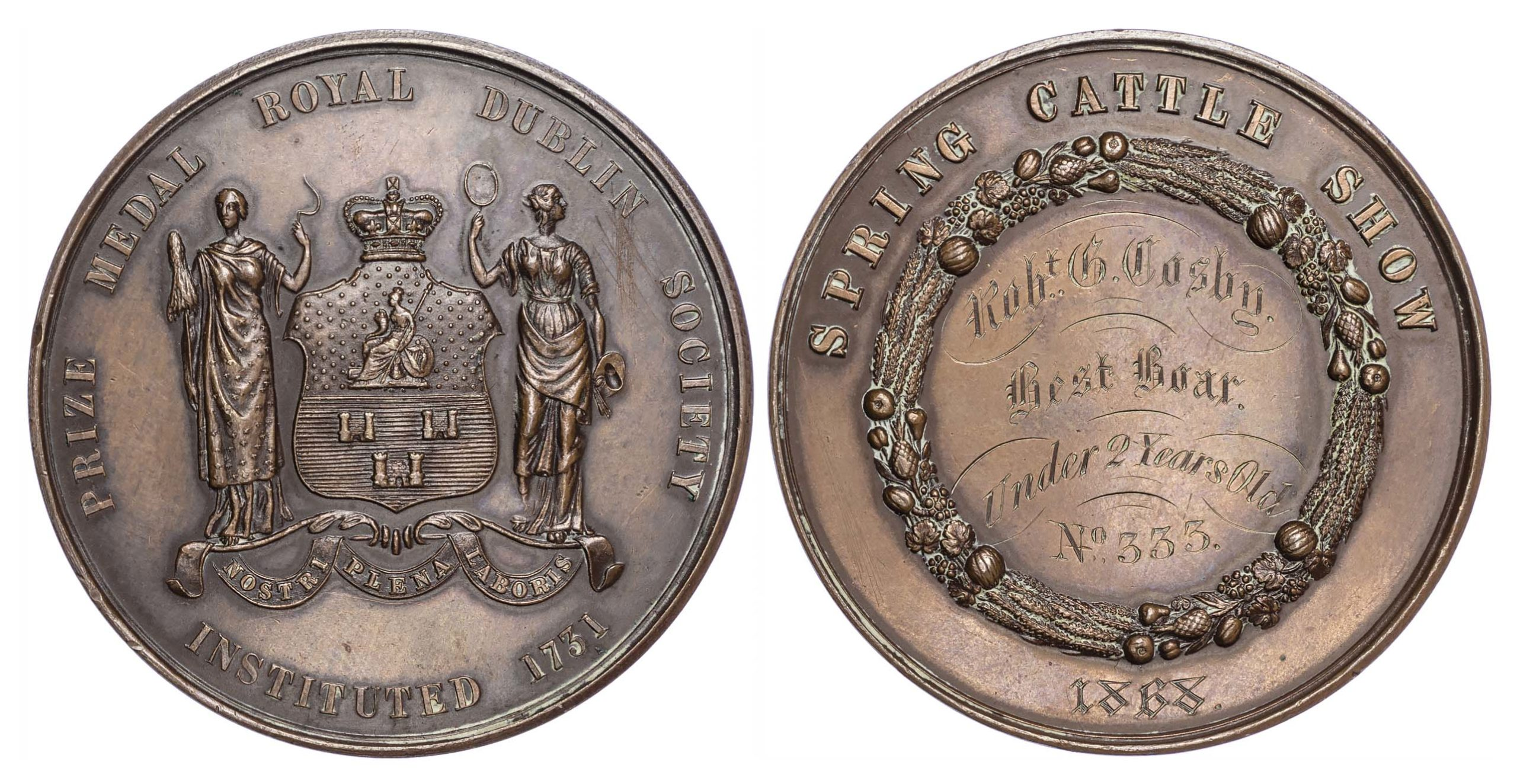 Royal Dublin Society Spring Cattle Show 1868, a Bronze prize medal